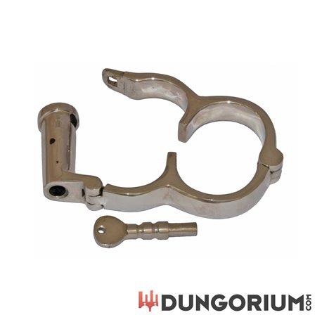 Dungorium Irish-8