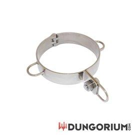 Dungorium Halsfessel Typ 2