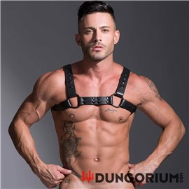 Streamline Bulldog Harness Schwarz