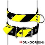 Personalisiertes Puppy Dog Halsband aus Neopren - Riker