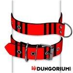 Personalisiertes Puppy Dog Halsband aus Neopren - Linus