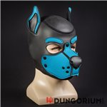 Mr S Neopren Puppy Hood K9
